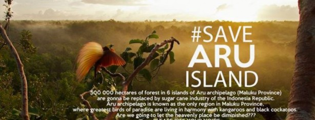 In Solidarity with Aru Island